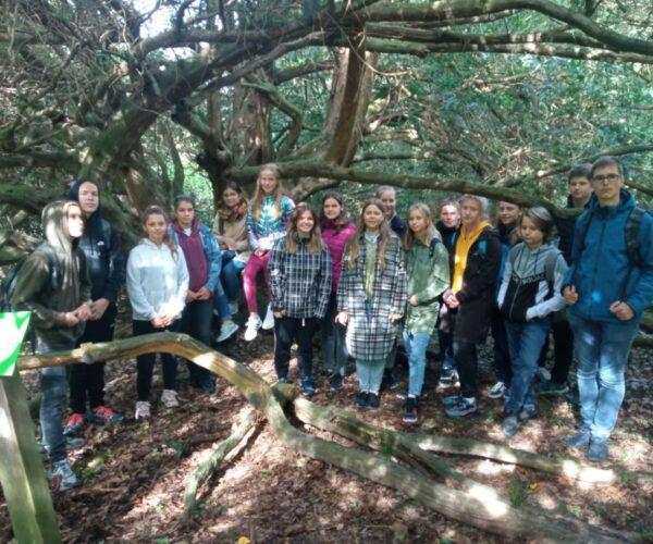 Ostatni dzień obozu językowego w Arboretum- język i natura.